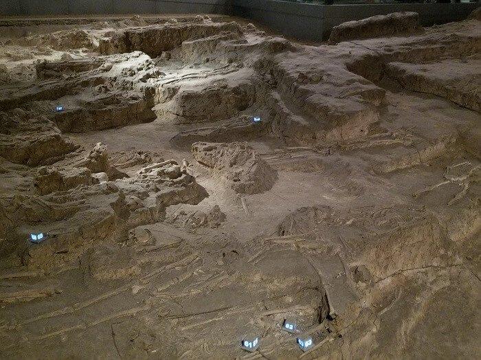 Nanjing Massacre Memorial skeletal remains