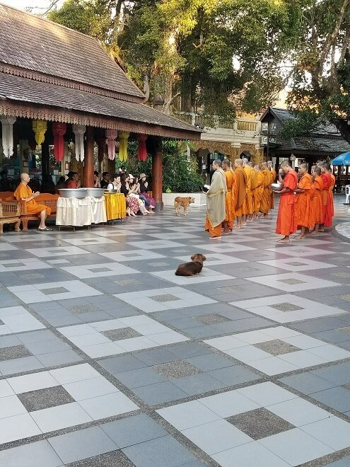 monks Doi Suthep Chiang Mai