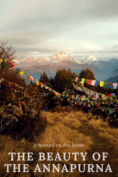 The beauty of the Annapurna - discover the gorgeous lesser known range of the Himalayas