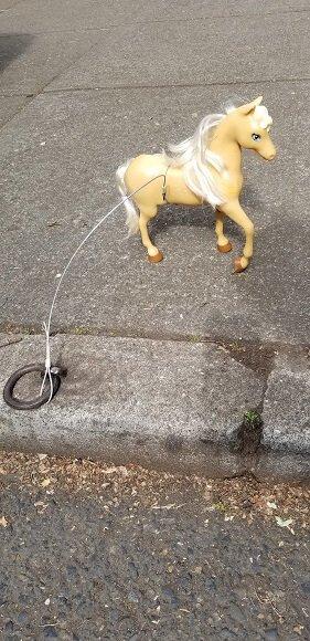 Portland my little pony