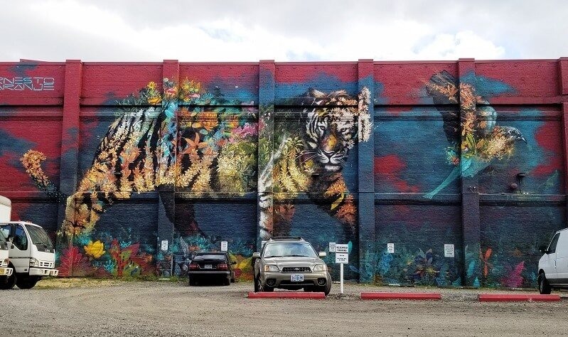 tiger by ernesto maranje in portland